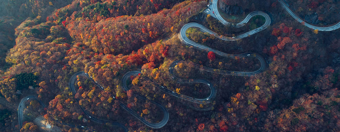 La strada per Nikko