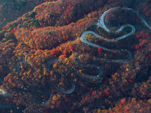 Nikko e la strada per arrivarci - Watabi