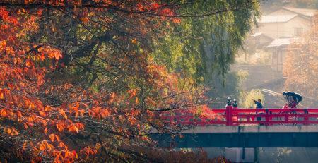 Ponte rosso di Takayama - Watabi