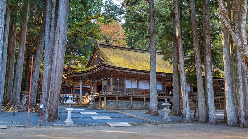 Un tempio tra gli altri cedri di Koyasan