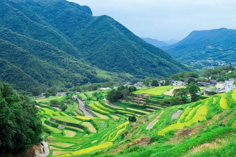le verdi risaie nella valle interna di shodoshima